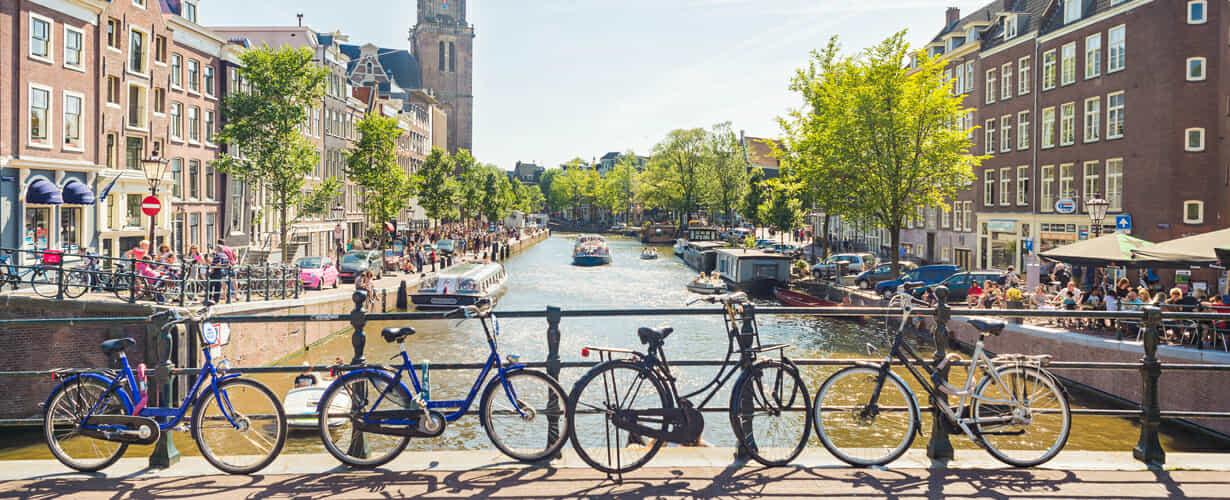 Export/Import von und in die Niederlande